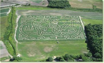sauchuk corn maze 2010